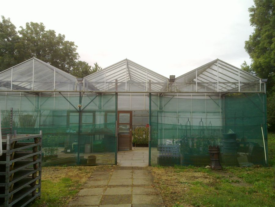 Top Greenhouse outside