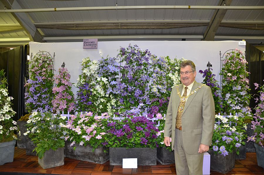 Mayor of Harrogate awarded our stand as his favourite