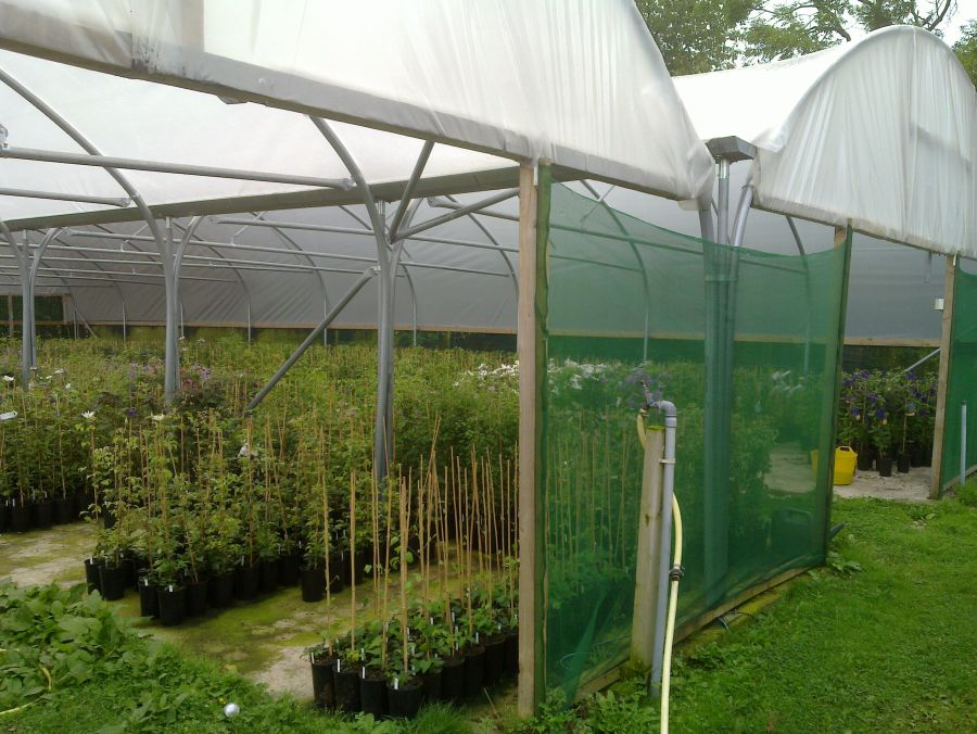 Another One of our Growing Tunnels