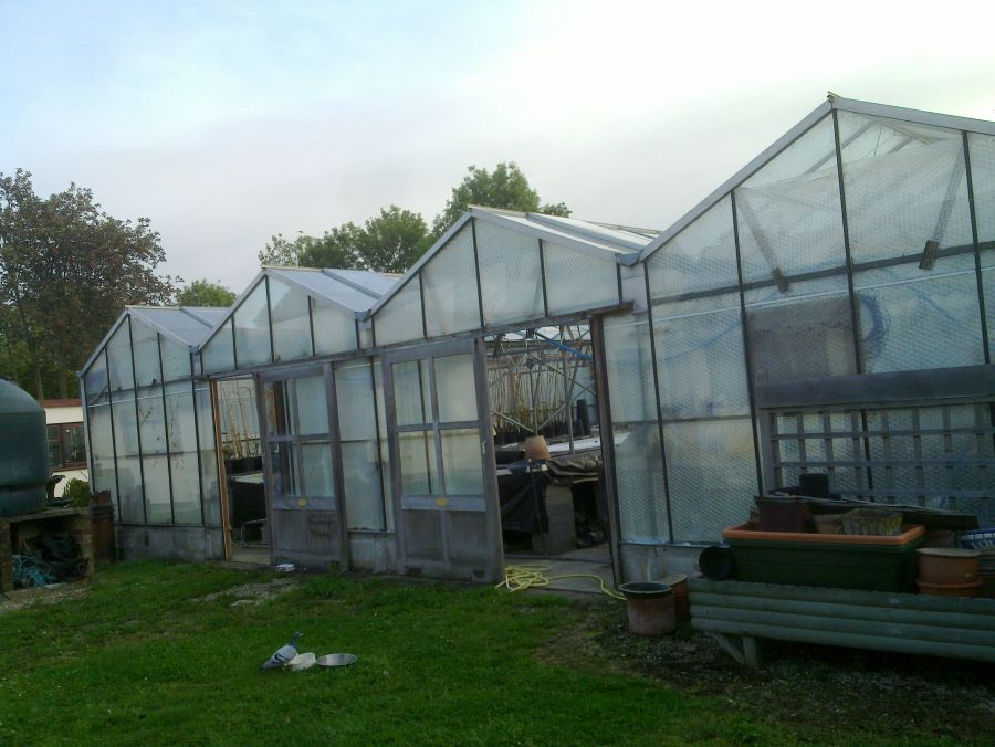 Bottom greenhouse