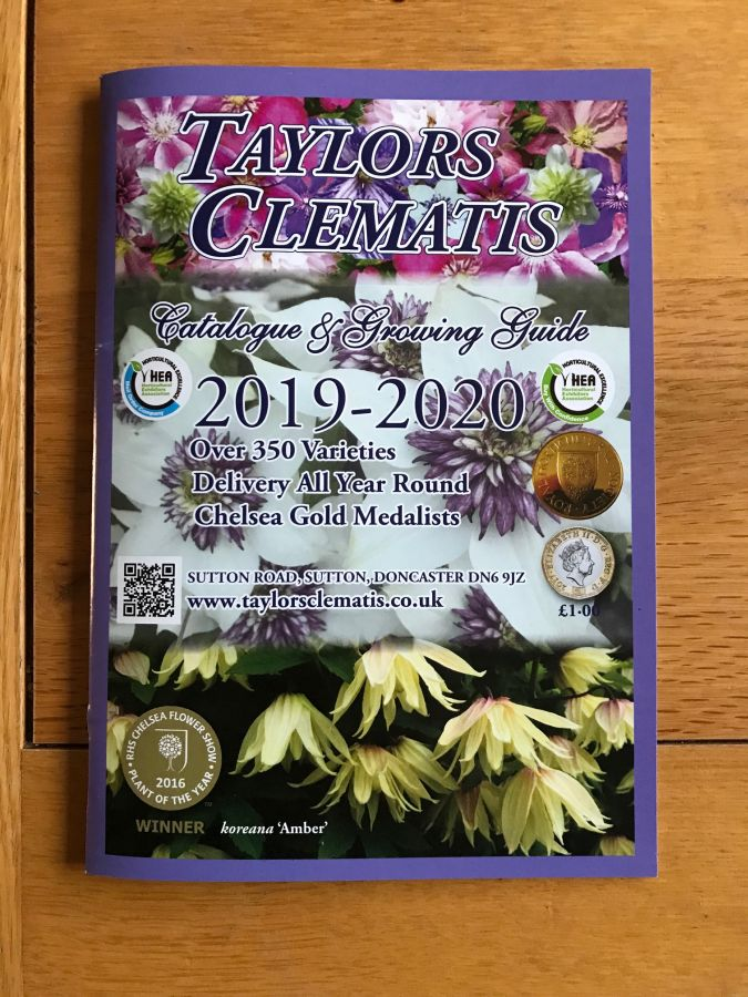 Taylors Clematis 2019 /2020 Catalogue