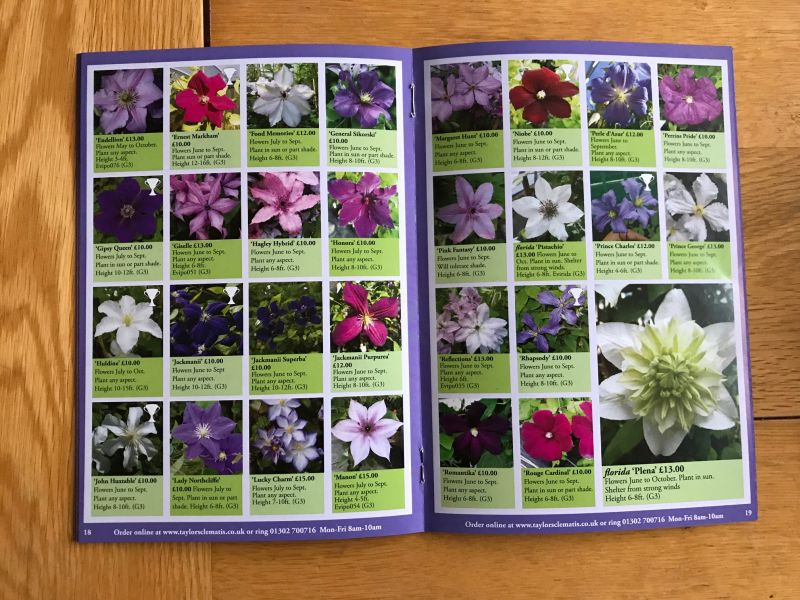 Taylors Clematis 2019 /2020 Catalogue inside