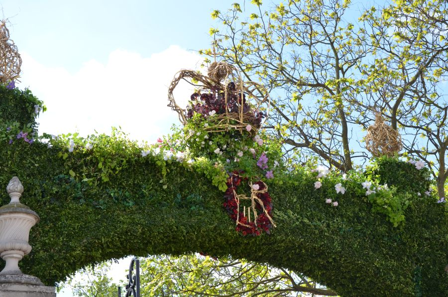 Look close and you will see our clematis near the crown