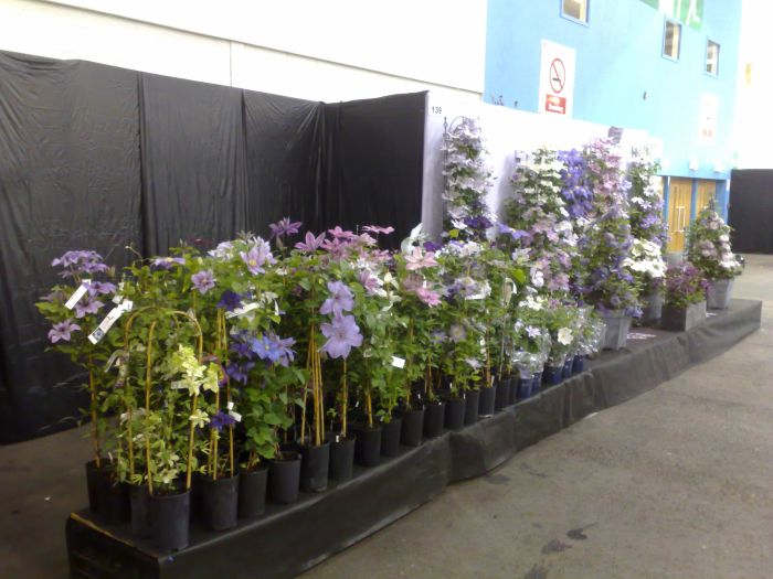Gardening Scotland display plus sales area
